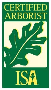 professional arborist comox valleprofessional arborist comox valle